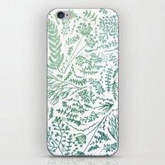 GREEN HERBS iPhone & iPod Skin