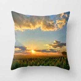 Iowa Corn Fields Throw Pillow