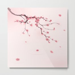 Oriental cherry blossom in spring 002 Metal Print