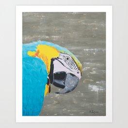 Oscar the Macaw Parrot Art Print