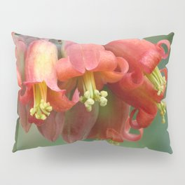 Red bells Pillow Sham