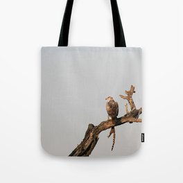 Hawk Eagle with its Catch Tote Bag