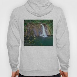 Autumn leaves in the waterfall Hoody