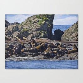 West Coast Art - Bathing Beauties Canvas Print