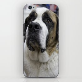 Beethoven iPhone Skin