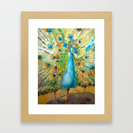 Peacock Outstretched Framed Art Print