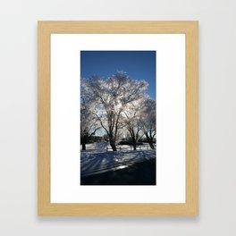 Sunshine in winter Framed Art Print