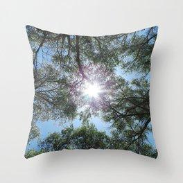 Arizona Sun Throw Pillow