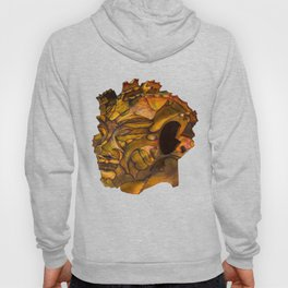Verdence Recycled Hoody