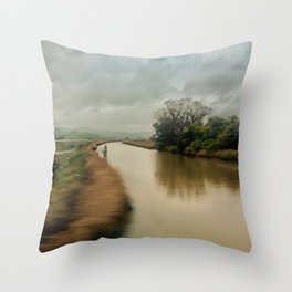 American River Throw Pillow