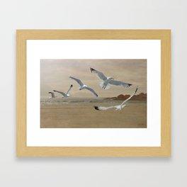 Seagulls Flying Along the Beachfront Framed Art Print