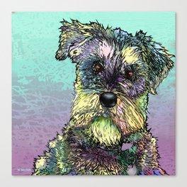Schnauzer dog. Canvas Print