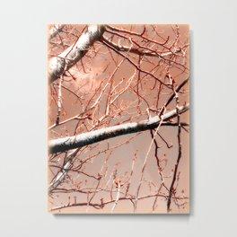 Budding Branches Metal Print