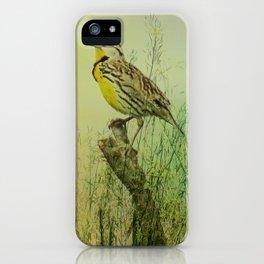 The Meadow Lark Sings iPhone Case