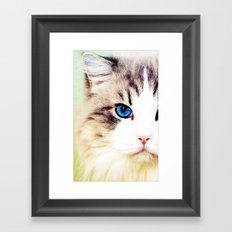 Eye of Cat - for iphone Framed Art Print