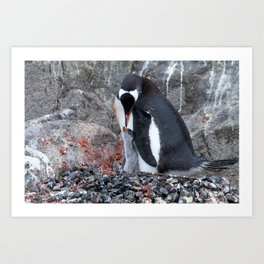 Pinguin with a chick Art Print