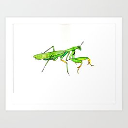 Madame Mantis Art Print