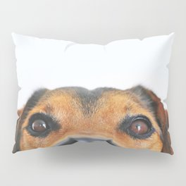 Dog looking at you Pillow Sham
