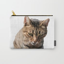 Tabby Looking Down Background Removed Carry-All Pouch