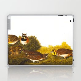 Shore Lark Bird Laptop & iPad Skin