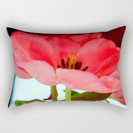 Flat Breed Rectangular Pillow