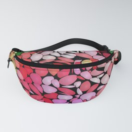 Jazzed Fanny Pack
