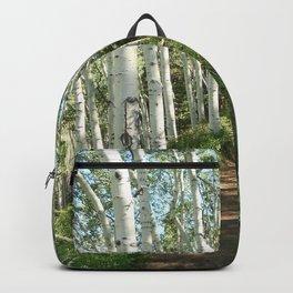 Jud Weibe Trail Telluride Backpack