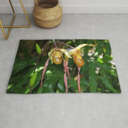 Lady Slipper Orchid I Rug