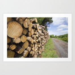 The wood stack Art Print