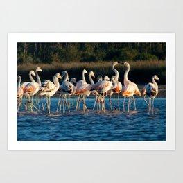Conversing flamingo's Art Print
