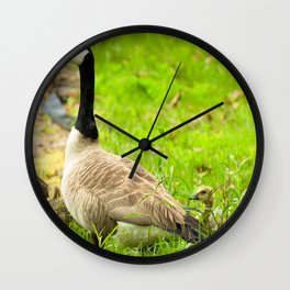 Canadian Geese and Babies Wall Clock