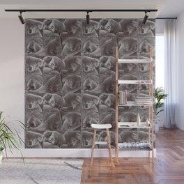Sleepy Koala Wall Mural