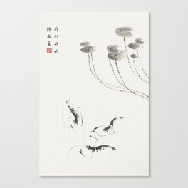Summer shrimp Canvas Print
