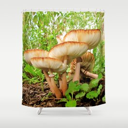 Mushroom Fairyland 1 Shower Curtain