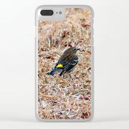 Dendroica Coronata Clear iPhone Case