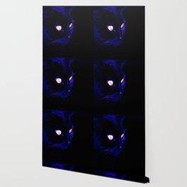 Black Cat Photograph, Halloween Eyes Wallpaper