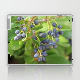 Huckleberry Bush Laptop & iPad Skin