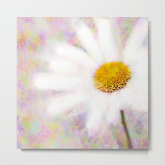 Daisy on Butterflies Metal Print