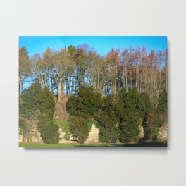 Trees on a Limestone Outcrop Metal Print