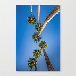 Upside Down LA Palms Canvas Print