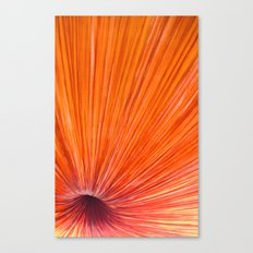 Orange and Red Canvas Print