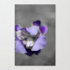 Purple and grey Canvas Print