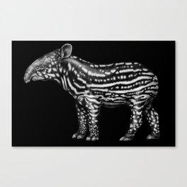 Tapir Canvas Print
