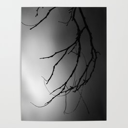 Hand of the Skeleton Tree Poster