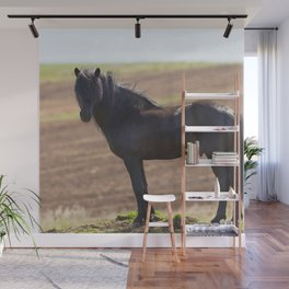 Watercolor Horse 21, Icelandic Pony, Höfn, Iceland, Pride of the West Wall Mural