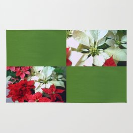 Mixed color Poinsettias 1 Blank Q5F0 Rug