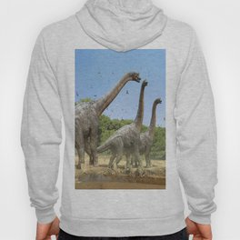 Dinosaurs walking on the river Hoody