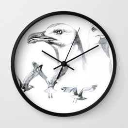 Great Black-backed Gull - Larus marinus   SK043 Wall Clock