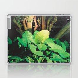In the Park I Laptop & iPad Skin