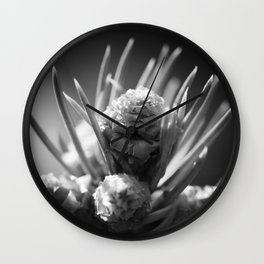 aspirations of the pinecone Wall Clock